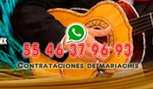 mariachis coyoacan