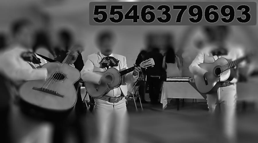 Mariachis-Coyoacán-DF